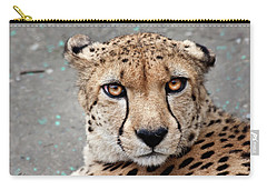 Harbin Leopard Carry-all Pouch
