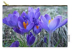 Harbinger Of Spring Carry-all Pouch