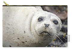 Harbor Seal Portrait Carry-all Pouch
