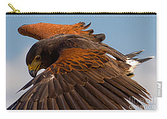 Carry-all Pouch featuring the photograph Harris Hawk Approach-signed-#6077 by J L Woody Wooden
