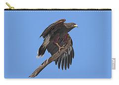 Harris Hawk - Transparent Carry-all Pouch
