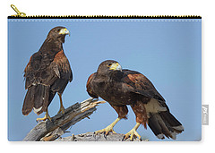 Harris Hawks Carry-all Pouch by Elvira Butler