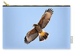 Carry-all Pouch featuring the photograph Harris's Hawk H37 by Mark Myhaver