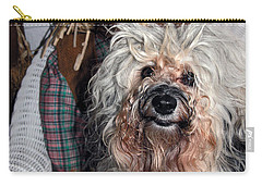 Carry-all Pouch featuring the photograph Havanese Cutie by Sally Weigand