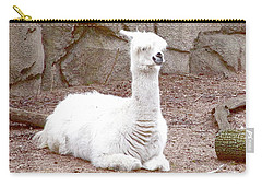 Have You Seen My Friend George? Carry-all Pouch