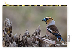 Hawfinch Perching Carry-all Pouch by Torbjorn Swenelius