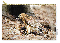 Carry-all Pouch featuring the photograph Hawk And Gecko by George Randy Bass