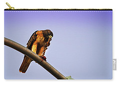 Hawk Eating Carry-all Pouch