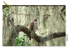 Hawk In Live Oak Hammock Carry-all Pouch