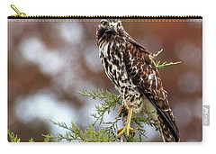 Red Shoulder Hawk Looking At Me Carry-all Pouch