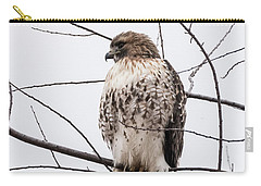 Hawk On Alert Carry-all Pouch
