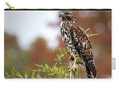 Red Shoulder Hawk Profile Carry-all Pouch