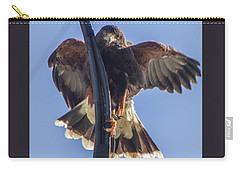 Hawk Watch 6 Carry-all Pouch