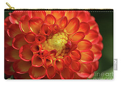 Hearts Entwined Carry-all Pouch by Rachel Cohen