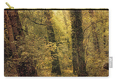Heaven's Glimmer Carry-all Pouch by John Rivera