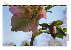 Hellebore Morning Carry-all Pouch