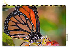 Hello Butterfly Carry-all Pouch by Ana V Ramirez