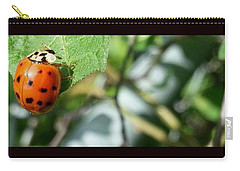 Carry-all Pouch featuring the photograph Hello Lady by Robert Knight