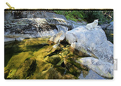 Carry-all Pouch featuring the photograph Hello by Sean Sarsfield