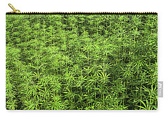 Hemp Plantation Carry-all Pouch