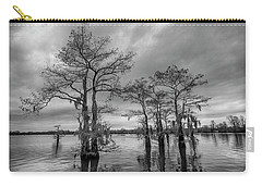 Carry-all Pouch featuring the photograph Henderson Swamp Wetplate by Andy Crawford