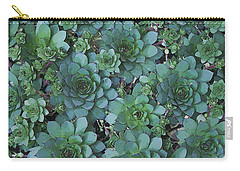 Hens And Chicks - Digital Art  Carry-all Pouch by Sandra Foster
