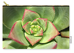Hens And Chicks Succulent And Design Carry-all Pouch by Joy Watson