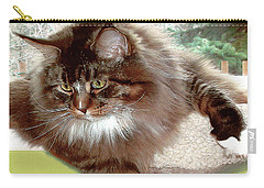 Carry-all Pouch featuring the photograph Hercules The Beautiful. by Roger Bester