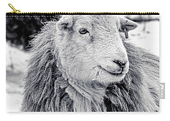 Carry-all Pouch featuring the photograph Herdwick Sheep by Keith Elliott