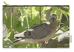 Carry-all Pouch featuring the photograph Here's Looking At You Babe by Anne Rodkin