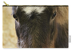 Here's Looking At You Carry-all Pouch by Suzanne Luft