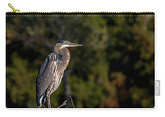 Heron At Sunrise Carry-all Pouch by Martina Thompson