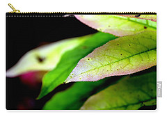 Hickory Leaf Carry-all Pouch