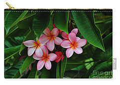 Hidden Beauties Carry-all Pouch by Craig Wood