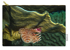 Carry-all Pouch featuring the photograph Hidden Christmastree Worm by Jean Noren