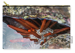 Carry-all Pouch featuring the photograph Hidden Treasure by Colleen Coccia