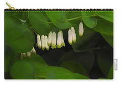 Hidden Treasures Carry-all Pouch by William Tanneberger