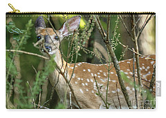 Hiding Fawn Carry-all Pouch