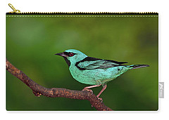 Highlight Carry-all Pouch by Tony Beck