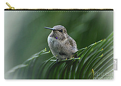 Carry-all Pouch featuring the photograph Hint Of Purple by Debby Pueschel