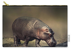 Carry-all Pouch featuring the photograph Hippo by Charuhas Images