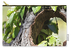Hole Carry-all Pouch