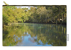 Homosassa River Carry-all Pouch by D Hackett