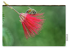 Honey Bee Carry-all Pouch by Tam Ryan