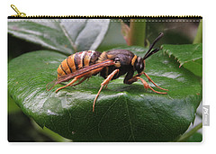 Hornet Moth Carry-all Pouch