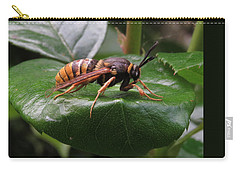 Hornet Moth 2 Carry-all Pouch
