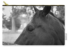 Horse At Fence Carry-all Pouch