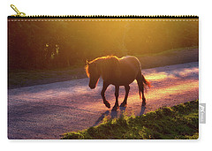 Horse Crossing The Road At Sunset Carry-all Pouch