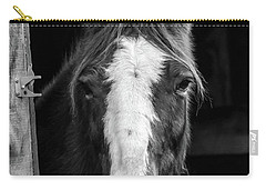 Horse Looking Through Stall Carry-all Pouch