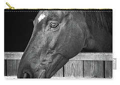 Carry-all Pouch featuring the photograph Horse Portrait by Delphimages Photo Creations